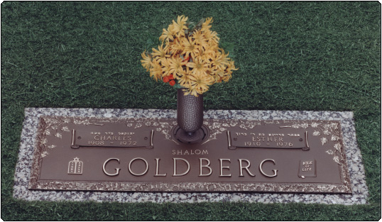 goldberg1_full